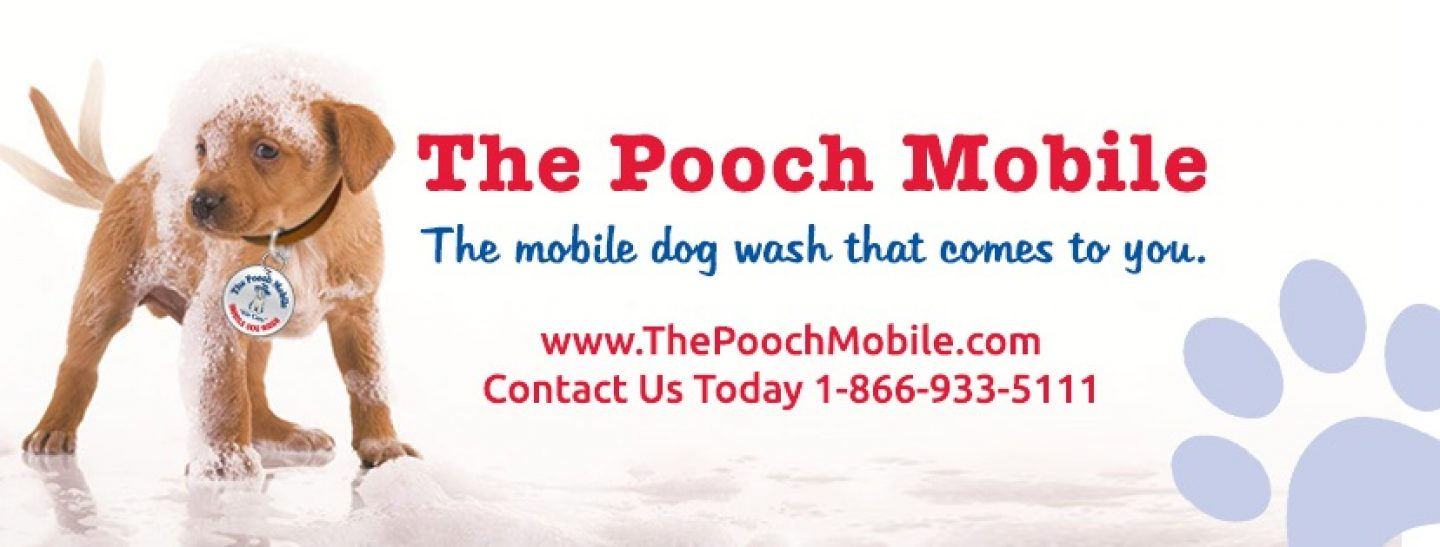 The Pooch Mobile Dog Wash Gilbert East